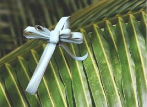 palm_cross